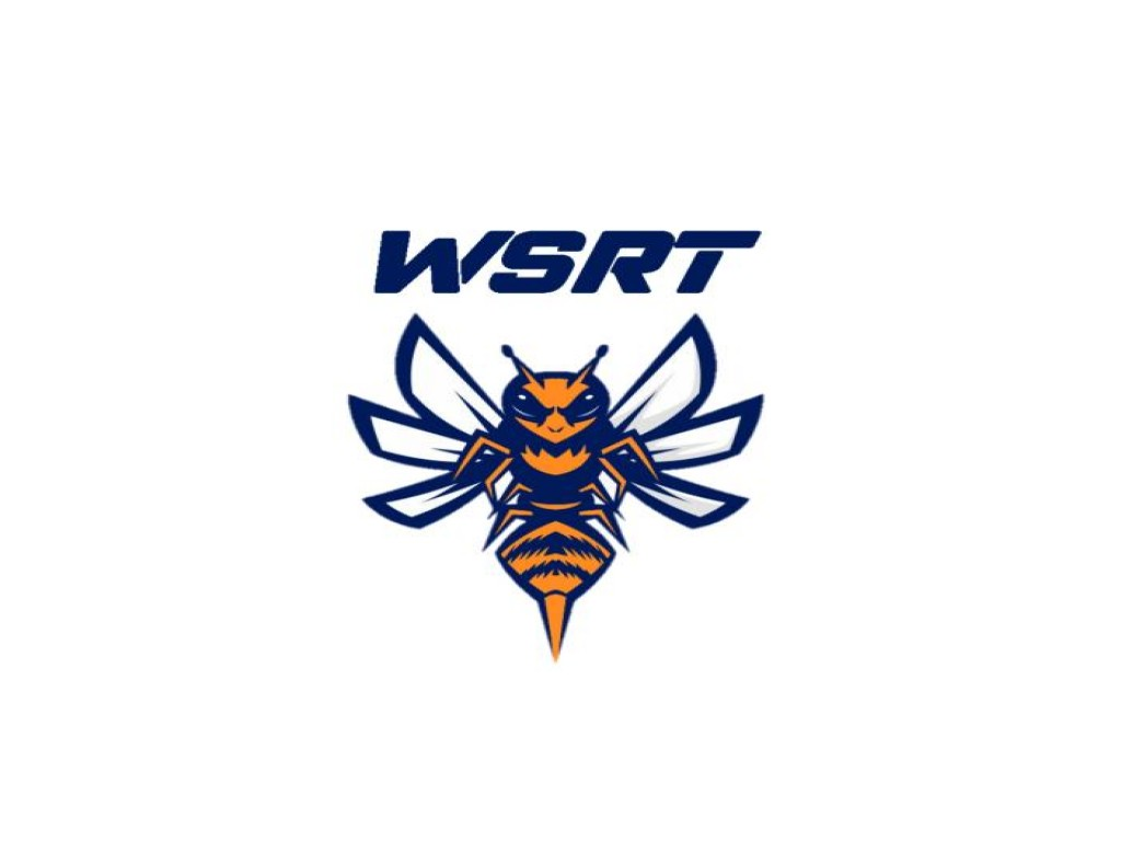 WSRT - Wasp Sim Racing Team